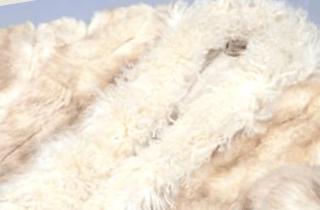 チベットラムコート