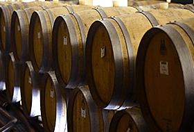 ワインの歴史